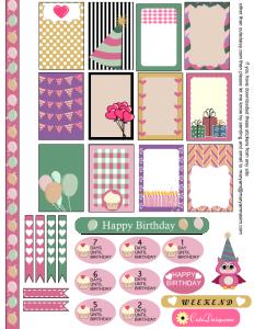 Birthday Sampler Sticker Kit for Happy Planner