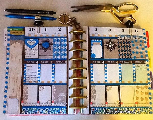 blue rustic stickers used in planner