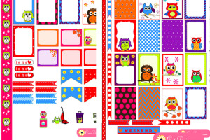 Colorful Owl Stickers for Planner